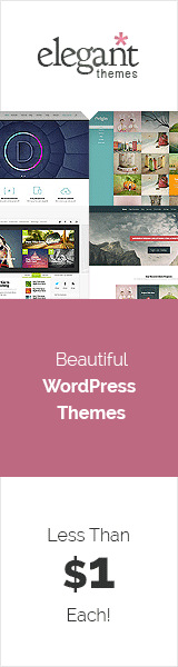 WordPress Divi